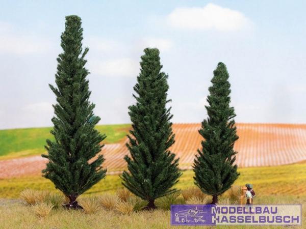 Zypressen, 3 Stück 10, 11 und 13 cm hoch - Spur H0,TT,N