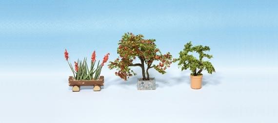 Zierpflanzen in Blumenkübeln