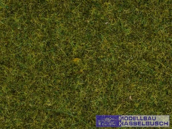 Streugras Wiese, 1,5 mm