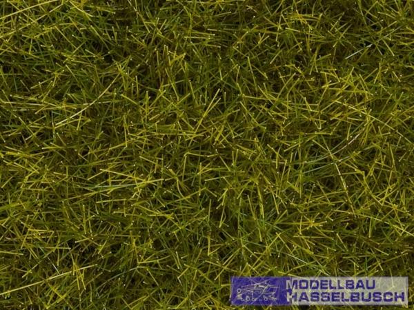 Wildgras XL Wiese, 12 mm