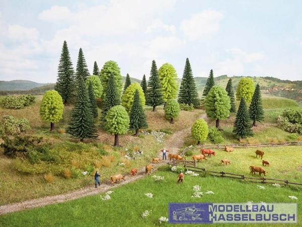 Mischwald, 10 Bäume, 5 - 14 cm hoch