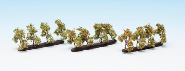 Plantagenbäume mit Äpfeln