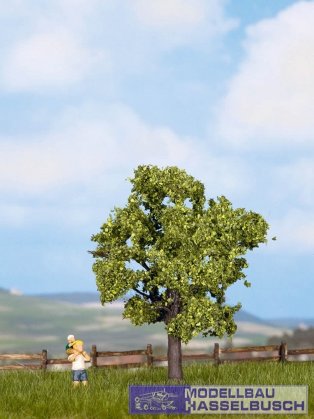 Obstbaum, grün