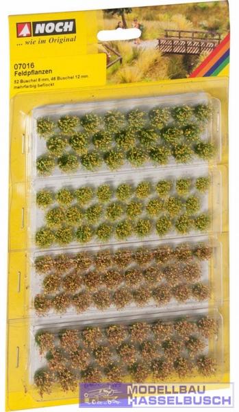 Grasbüschel - Feldblumen