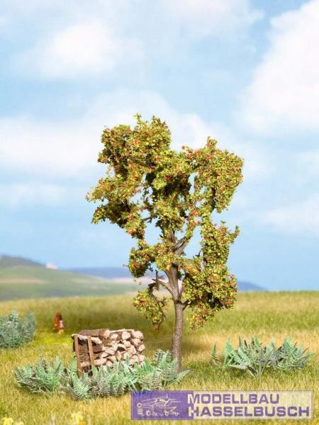 Vogelbeere mit Beeren