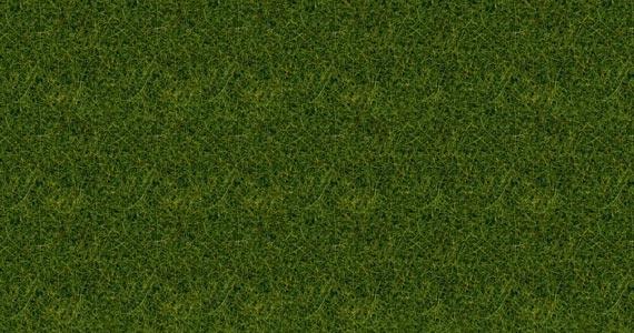 Wildgras XL, hellgrün, 12 mm