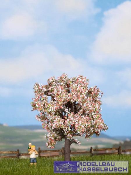 Obstbaum, blühend