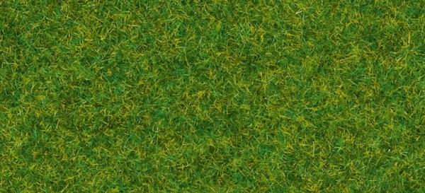 Streugras Zierrasen, 2,5 mm